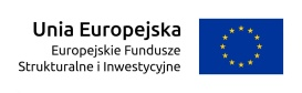 Regional Operational Programme for Silesian Voivodeship - participation of the Energopomiar-Elektryka company in the Ampere fair