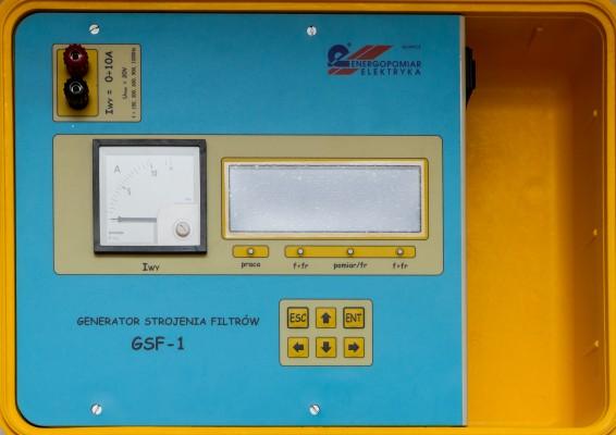 GSF-1---pyta-czoowa2